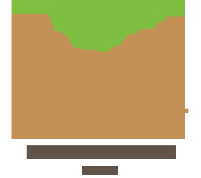 株式会社介護Tree